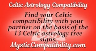 Celtic Astrology Compatibility