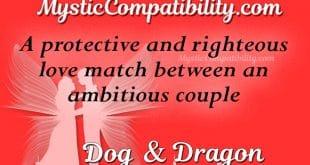 dog dragon compatibility