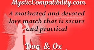 dog ox compatibility