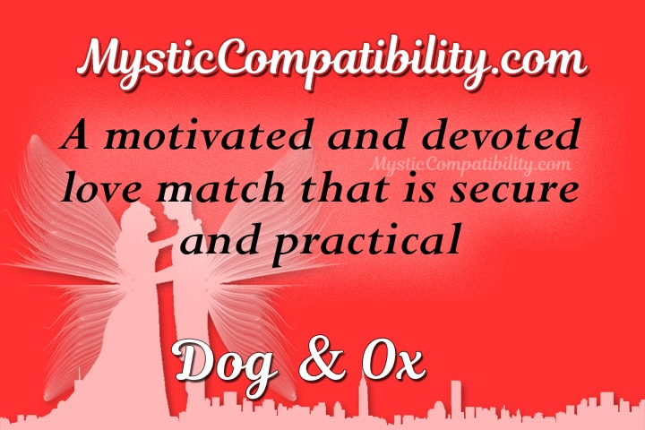 dog ox compatibility