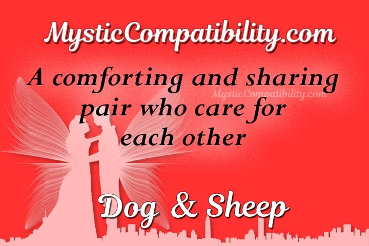 dog sheep compatibility