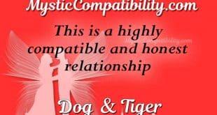 dog tiger compatibility