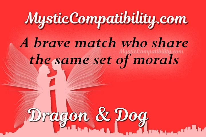 Dragon Dog Compatibility