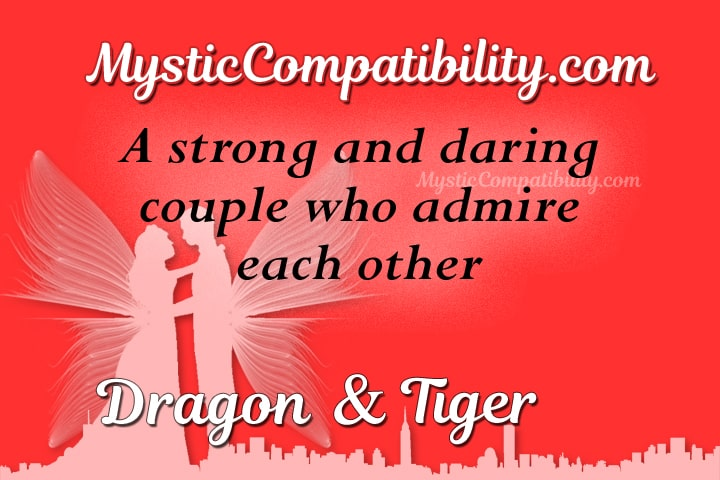 Dragon Tiger Compatibility