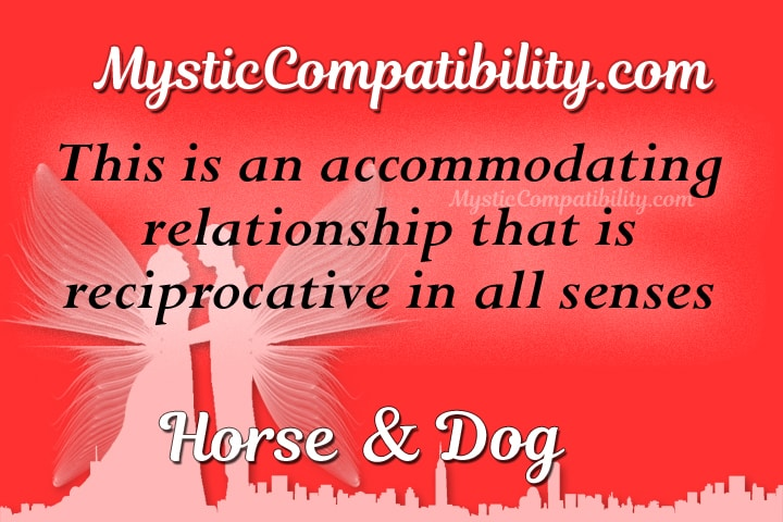 horse dog compatibility