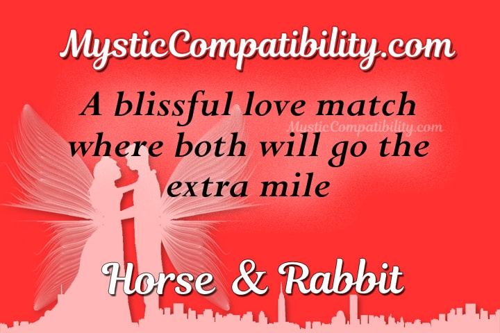 horse rabbit compatibility