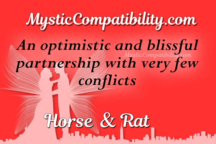 horse rat compatibility