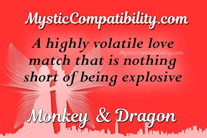 monkey dragon compatibility