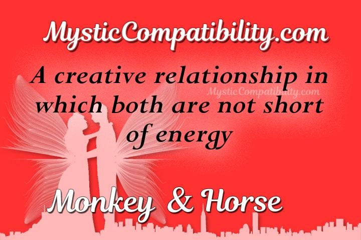 monkey horse compatibility