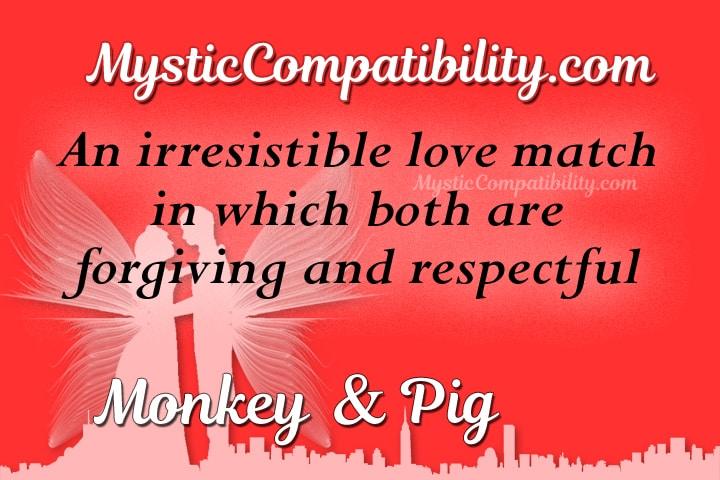 monkey pig compatibility