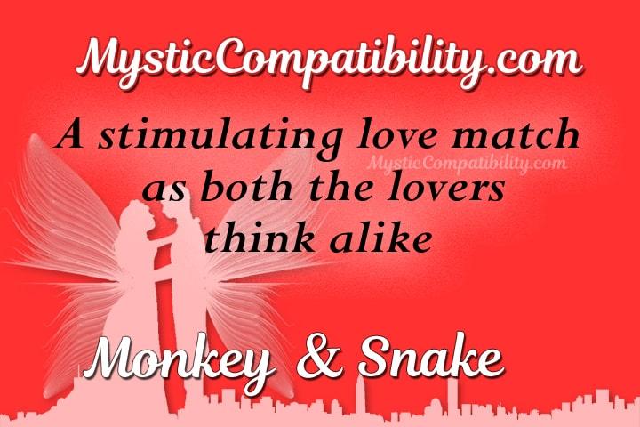 monkey snake compatibility