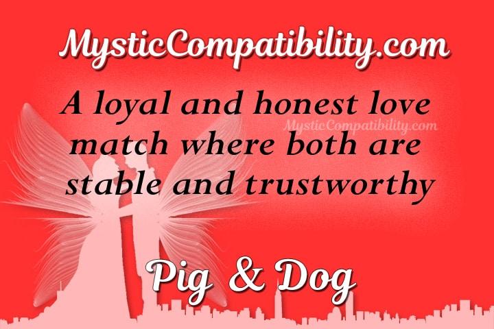 pig dog compatibility