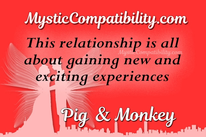 pig monkey compatibility