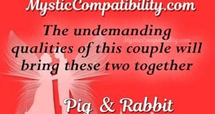 pig rabbit compatibility