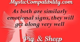 pig sheep compatibility