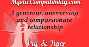 pig tiger compatibility