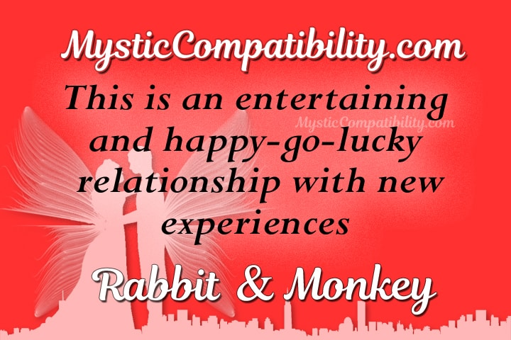 rabbit monkey Compatibility