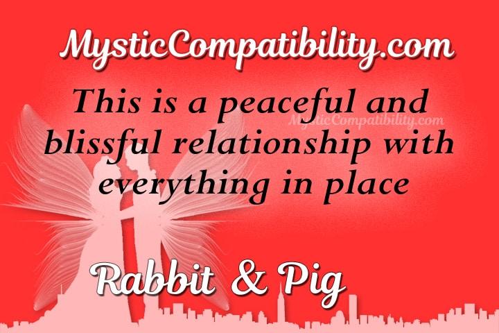rabbit pig compatibility
