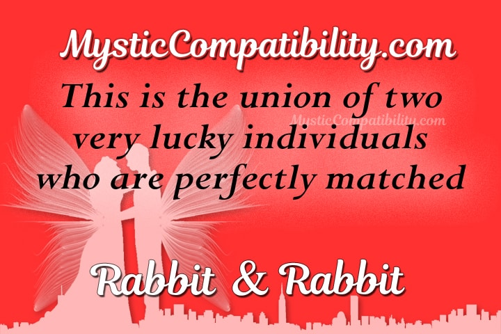 rabbit rabbit Compatibility