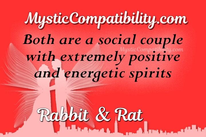 Rabbit Rat Compatibility