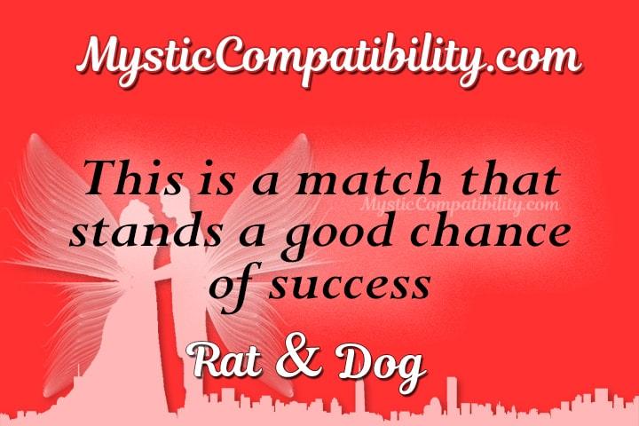 Rat Dog Compatibility