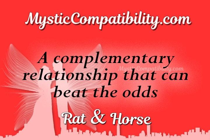 Rat Horse Compatibility