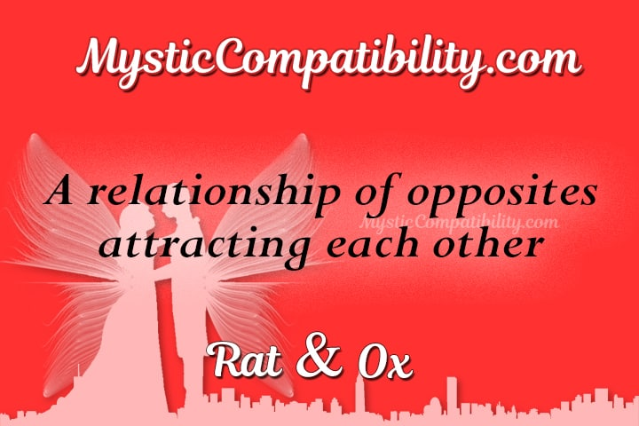 Rat Ox Compatibility
