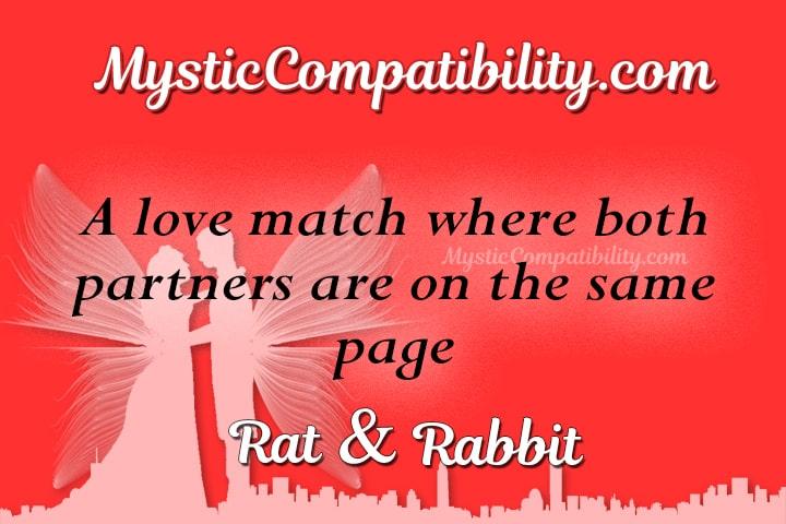 Rat Rabbit Compatibility