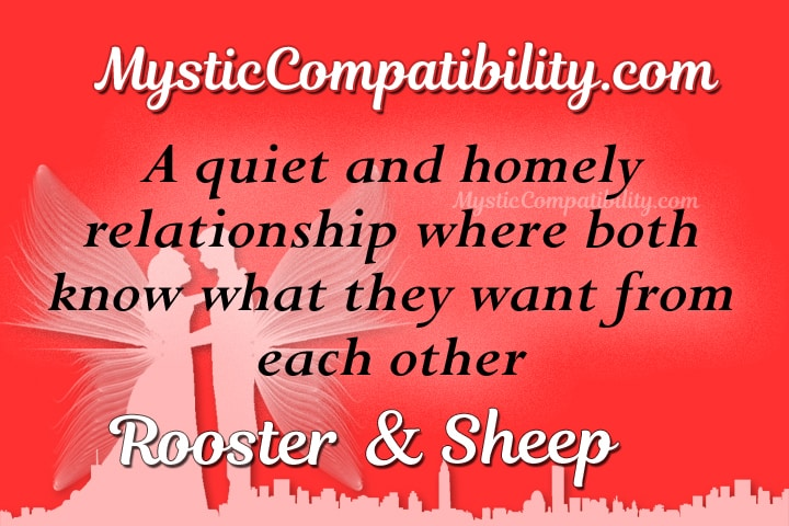 rooster sheep compatibility