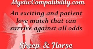 sheep horse compatibility