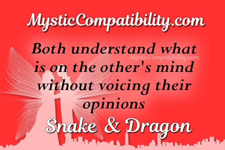snake dragon compatibility