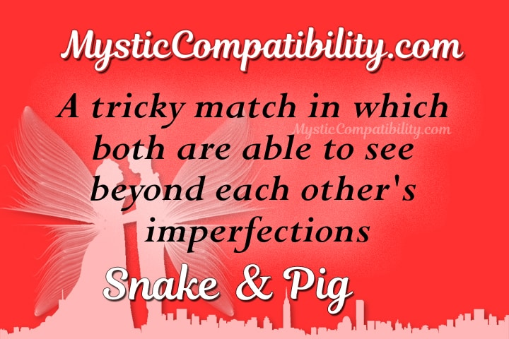 snake pig compatibility
