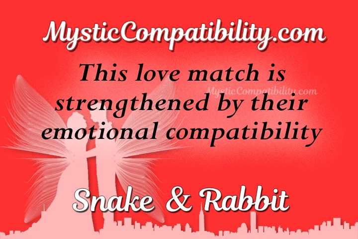 snake rabbit compatibility