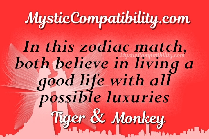 Tiger Monkey Compatibility