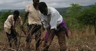 dating a farmer